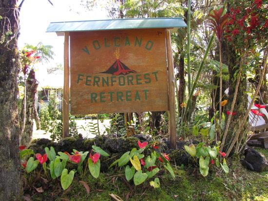 Volcano Fern Forest Retreat
