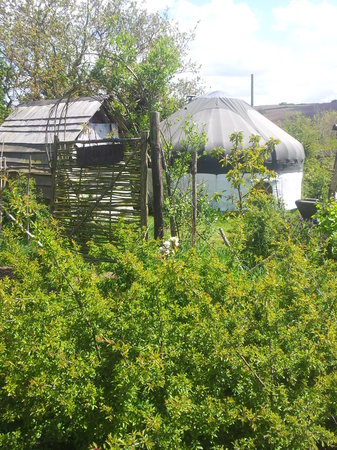 Mill Valley Yurts