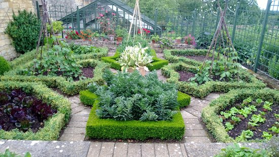 Formal vegetable garden picture of bourton house garden for Formal vegetable garden design