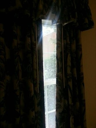 Wyndham Patriots Place: The choice is yours; privacy and no natural light or display yourself to the entire world to hav