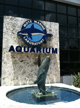 Photos of Mote Marine Aquarium, Sarasota