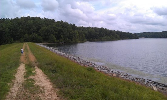 Dam on the lake picture of big hill pond state park for Center hill lake fishing report