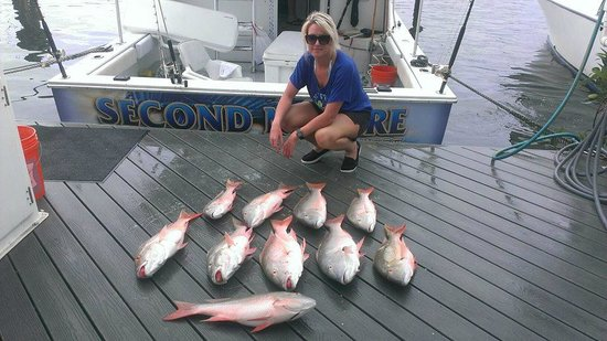 Wife 39 s catch picture of key west fishing connection for Private fishing charters