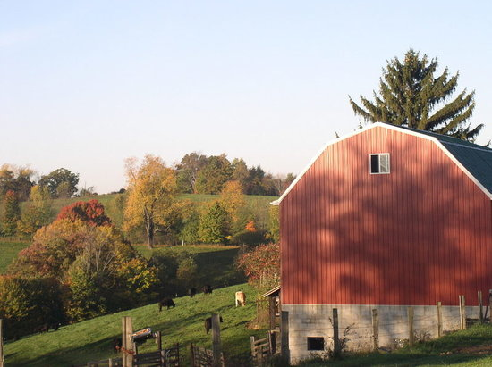 Fall foliage and rural beauty are easy to find in Butler County.