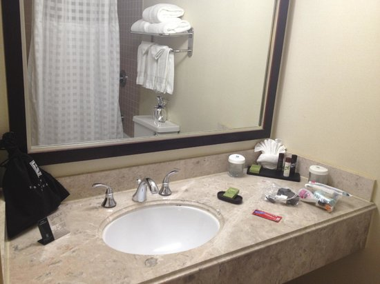 Bathroom Picture Of Embassy Suites San Francisco Airport