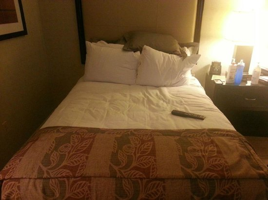 Hilton Alexandria Old Town: One double/full bed