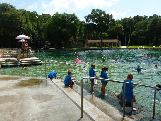 de leon springs online dating The first documented europeans to discover the area were led by explorer ponce de leon  dating back to at least the  time4learning homeschool unit study sent.