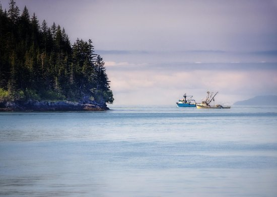 Fishing boats in prince william sound picture of for Anchorage alaska fishing