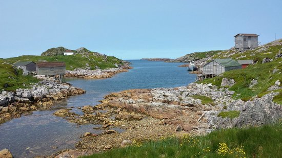 lLittle Fogo Island abandoned fishing Village Picture  : fogo island inn from tripadvisor.ca size 550 x 309 jpeg 47kB