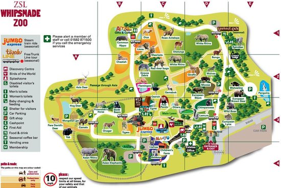 Map Of Park Picture Of Zsl Whipsnade Zoo Dunstable