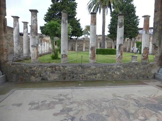 an essay on the house of the faun pompeii Houses of the wealthy in pompeii house of the faun.