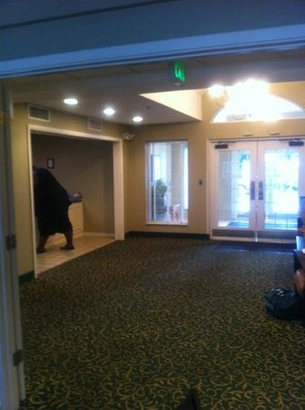 Extended Stay America - Charleston - Airport: lobby