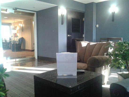 Crowne Plaza Dulles Airport Hotel: VIP lounge