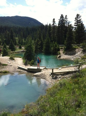 Hike to inkpots area for Johnston canyon cabins