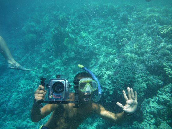 Snorkeling - Picture Of Falcon Adventure Sharm