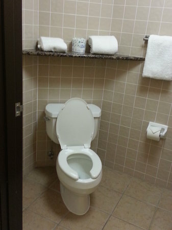 Drury Inn & Suites Albuquerque : Toilet