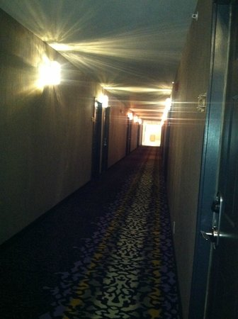 Comfort Inn Williamsburg Gateway: Hallway...