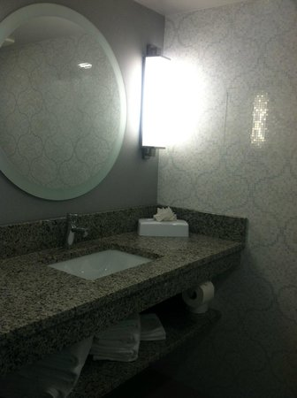 Comfort Inn Williamsburg Gateway: Sink and mirror