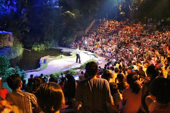 Cung ve may bay di Singapore tham quan vuon thu dem Night Safari