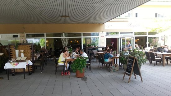 The view from the terrace picture of restaurant augusta for Terrace 45 restaurant