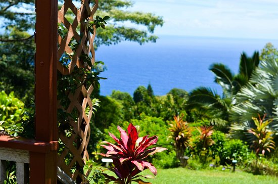 I Rest Here For A Looong Time Picture Of Maui Garden