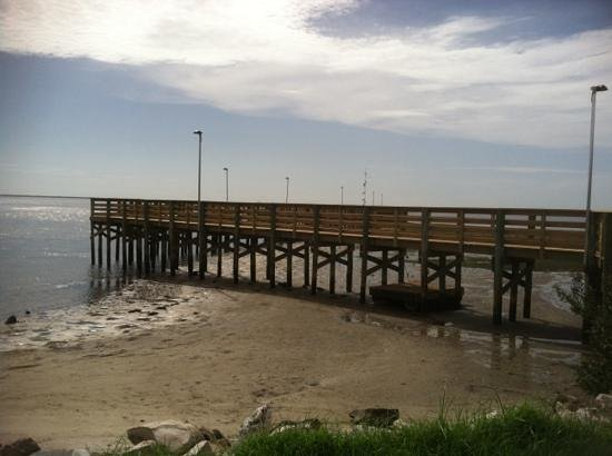 Fishing pier picture of anclote gulf park holiday for Gulf shores pier fishing forum