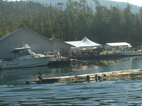 Rodgers fishing lodge picture of rodgers fishing lodge for British columbia fishing lodges