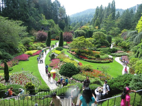 Concert Lawn And Stage Picture Of Butchart Gardens Central Saanich Tripadvisor