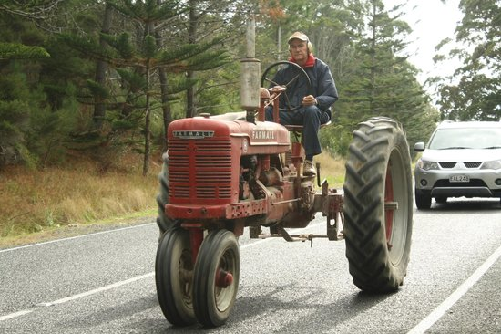 Tractors on parade, Mangawhai