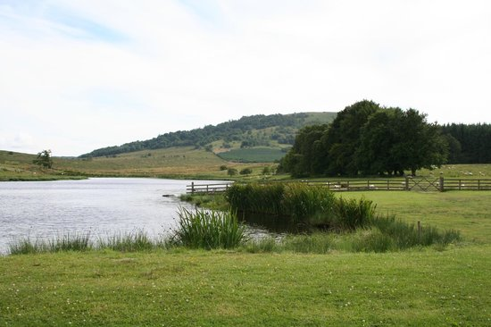 Cocklakes Fly Fishery