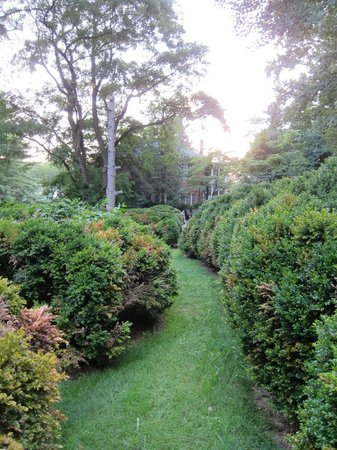 The Inn at Hans Meadow Bed and Breakfast: The Gardens
