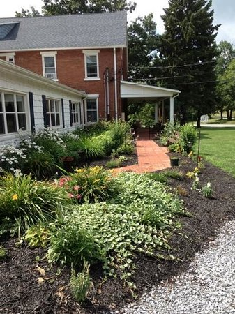 Fairview Bed and Breakfast