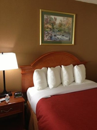 Country Inn & Suites By Carlson, Asheville Downtown Tunnel Road (Biltmore Estate), NC: bedroom