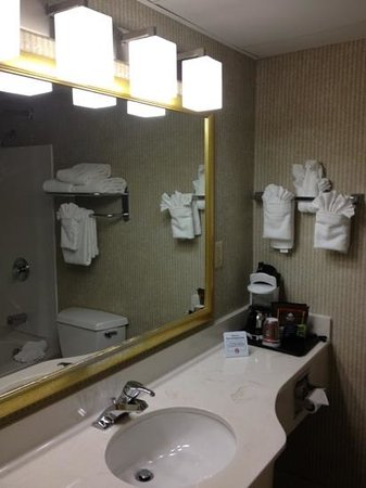 Country Inn & Suites By Carlson, Asheville Downtown Tunnel Road (Biltmore Estate), NC: bathroom