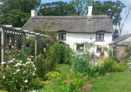 South worden b b reviews rates holsworthy uk devon for Jardin eden prairie