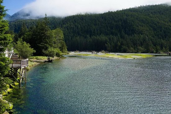 Clayoquot Wilderness Resort: Bedwell sound