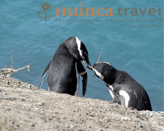 Huinca Travel - Tour