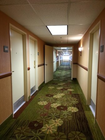 Holiday Inn Express San Diego - Escondido: Bright Hallways lead to lovely rooms