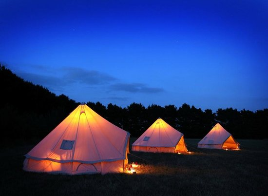 Wild Camp from Wild Luxury