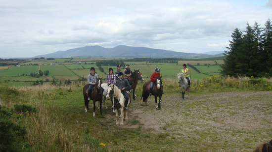 Ballyhoura Horse Trails - Private Rides