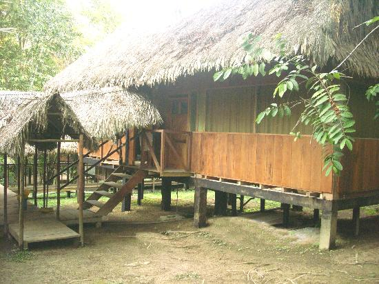 Amazon Eco Tours & Lodge