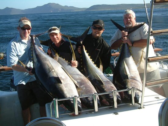 Two Oceans Sport Fishing Charters