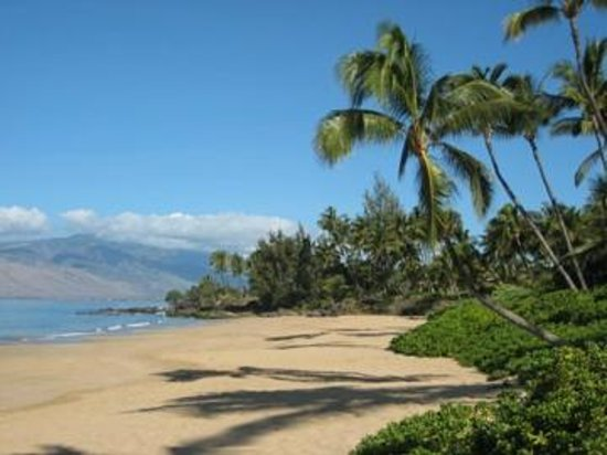 Photo of Dolphins Point Maui Kihei