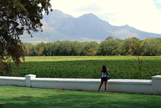 African Story Wine Tours