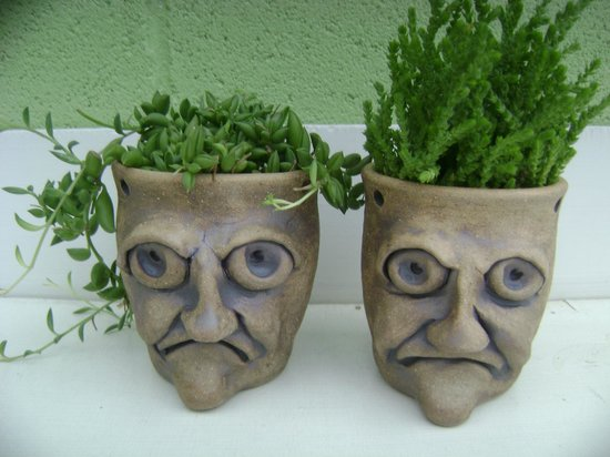 Fun And Whimsical Face Planters Picture Of Silva Gallery