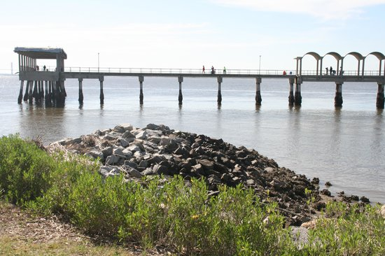 Fishing pier picture of jekyll island golden isles of for Oceanside pier fishing reports