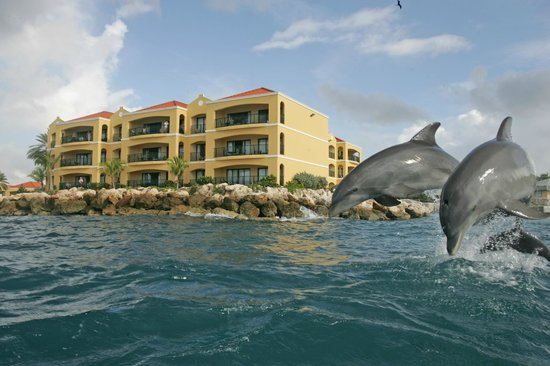Photo of Royal Sea Aquarium Resort Curaçao
