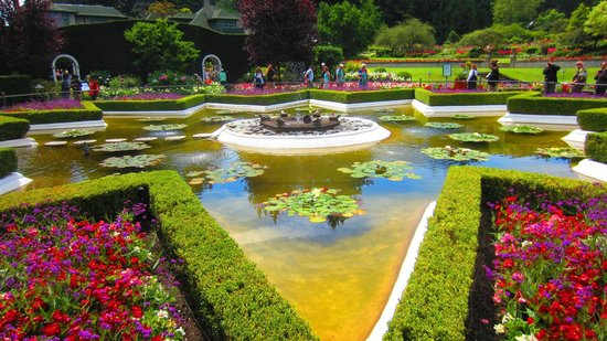 Hanging Baskets Wow Picture Of Butchart Gardens Central Saanich Tripadvisor