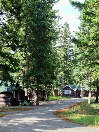Pine Bungalows: A view of the grounds