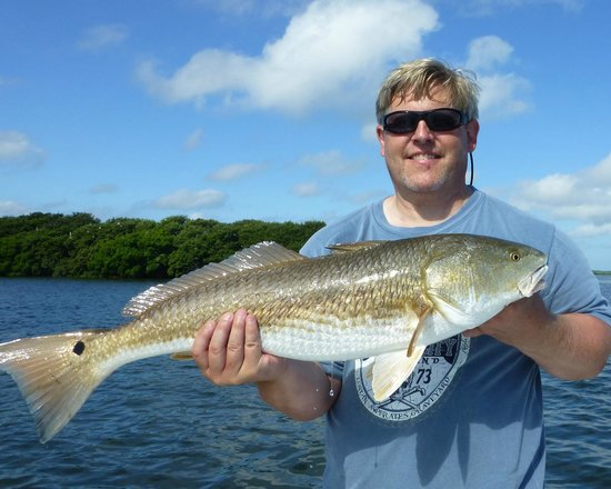 Dad caught his share of reds too picture of tampa fl for Tampa florida fishing charters